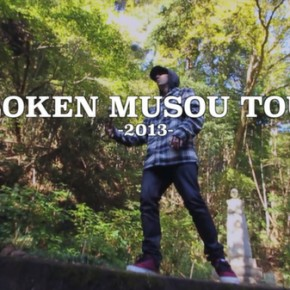 2013 12 Turner Musou