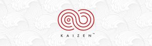 Kaizen WordPress Post